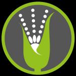 Logo semplice