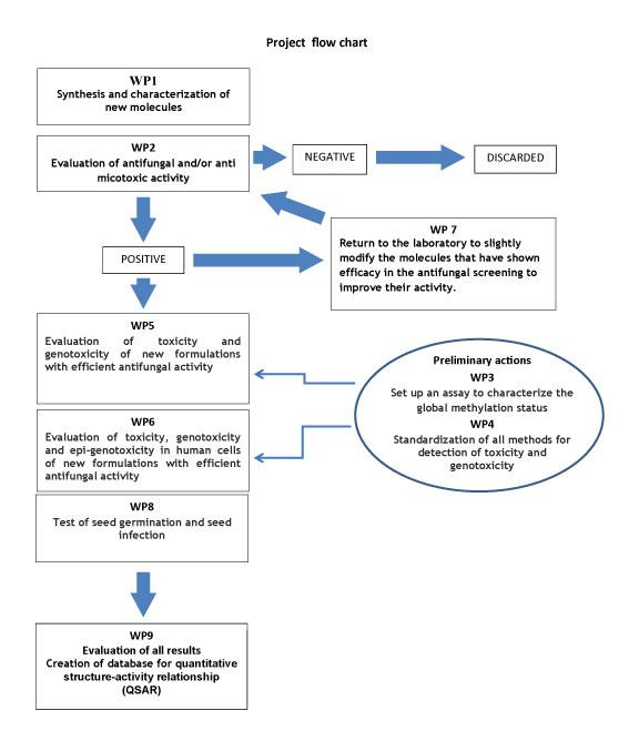 schema_progetto-ZANI